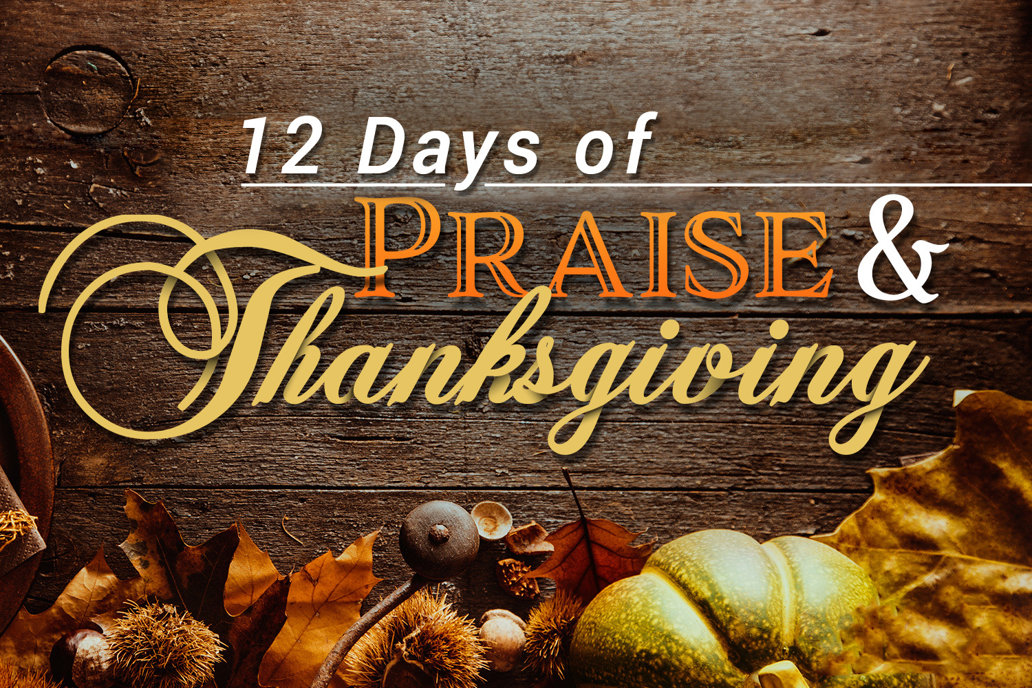 12 Days of Praise and Thanksgiving